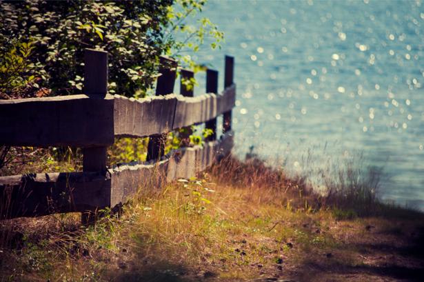 Фотообои с природой пейзаж заборчик (nature-00056)