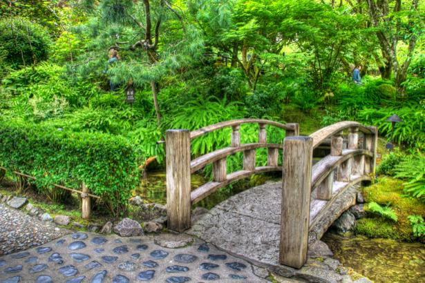 Фотообои с природой мост в парке (nature-00117)