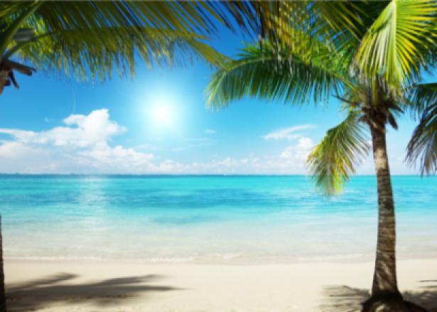 Фотообои пейзаж море пальмы берег (sea-0000027)
