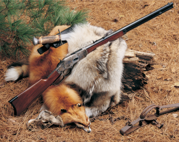 Фотообои охотничья композиция (sport-0000004)