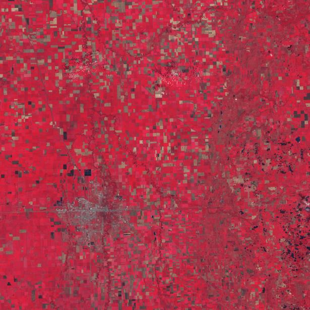 Фотообои на стену красные квадратики (terra-00219)
