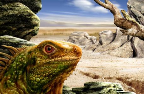 Фотообои ящерица в пустынных горах (fantasy-0000004)