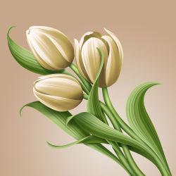 flowers-742