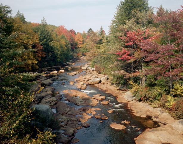 Фотообои горная река в лесу (nature-00249)