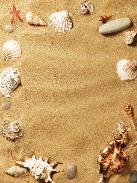 Фотообои для ванны на песке ракушки 1 (underwater-world-00073)