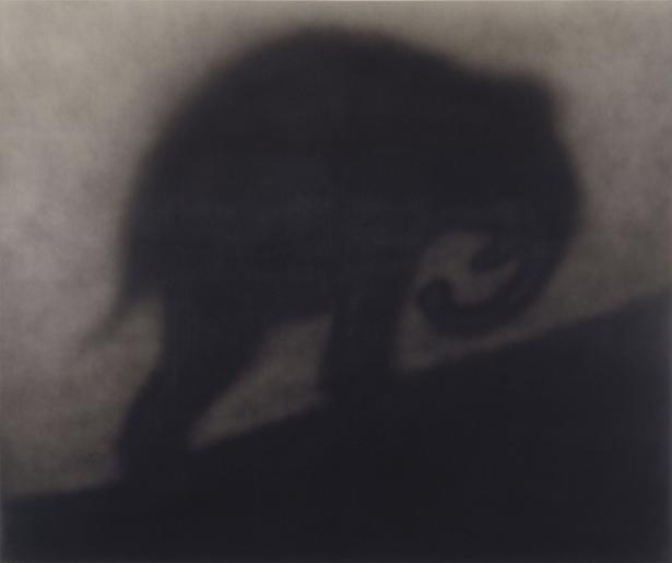 Рушей (art-0000433)