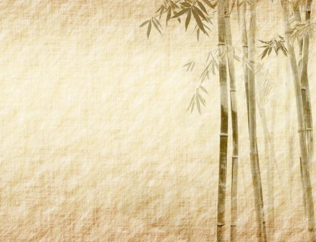 Фотообои в зал на стену Бамбук (flowers-0000210)