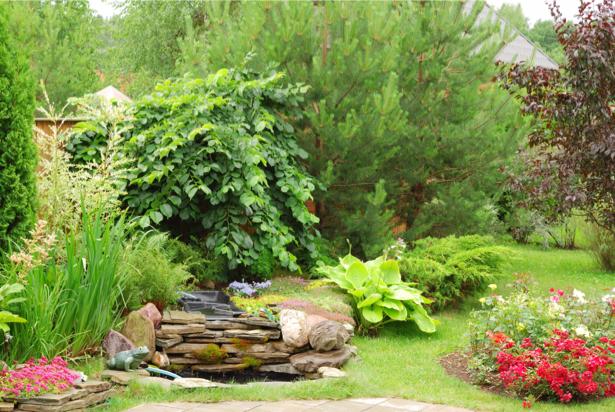 Фотообои парк с цветами (nature-00544)