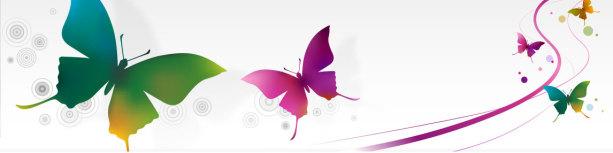 Фотообои разноцветные бабочки (commercial-00032)