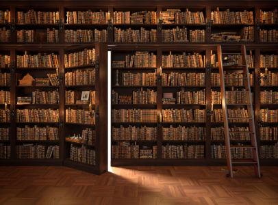Фотообои секретная дверь в книжном шкафу (door4)