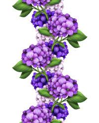 flowers-755