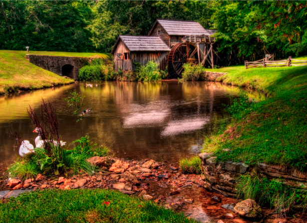 Фотообои мельница на озере (nature-00066)