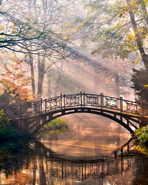 Фотообои элегия осени мост река (nature-00406)