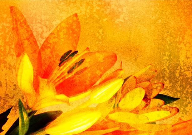 Фотообои цветы винтаж (retro-vintage-0000071)