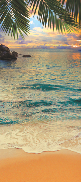 Фотообои вертикальный море пальмы (sea-0000199)