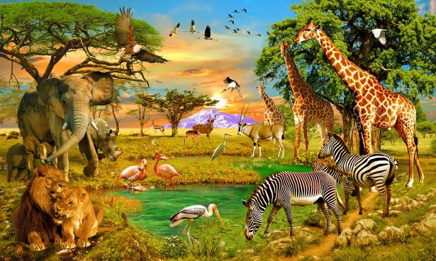 Фотообои Животные сафари (child-431)
