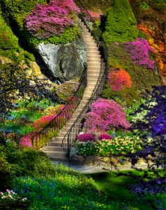 Фотообои лестница в парке в цветах (nature-00402)
