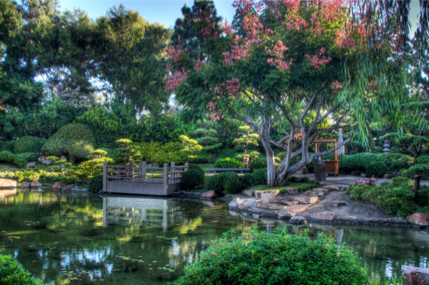 Фотообои река в саду (nature-00555)