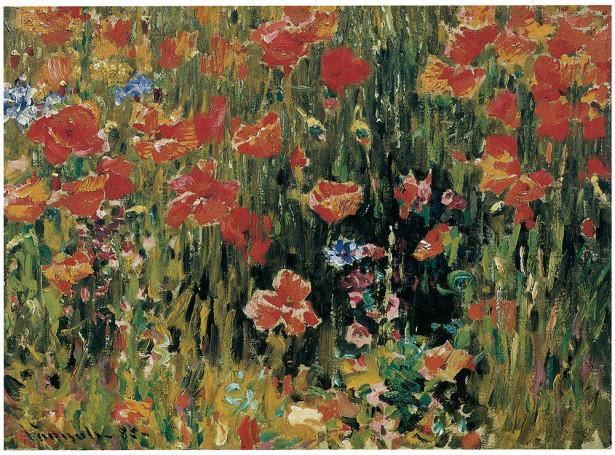 Картина цветы маки Роберт Воннох (pf-115)