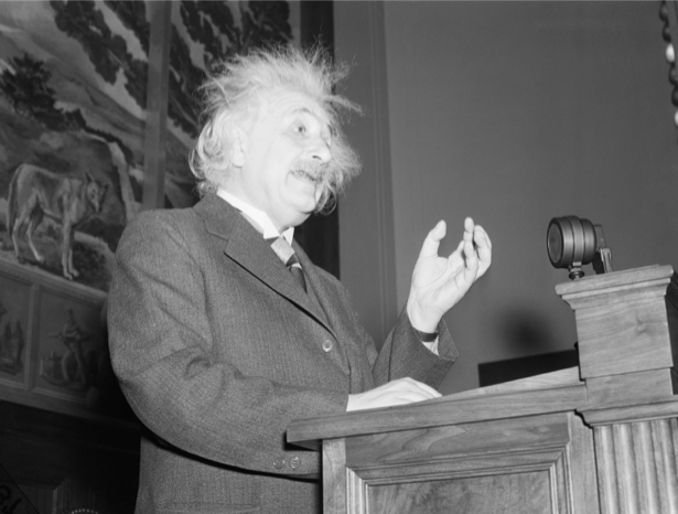 Альберт Энштейн, физик (retro-vintage-0000302)