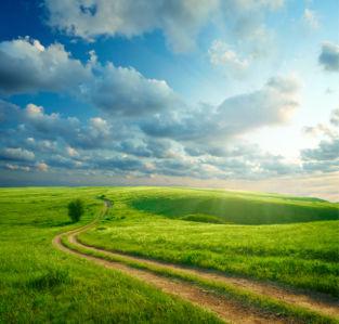 Фотообои дорога в поле небо (nature-0000827)
