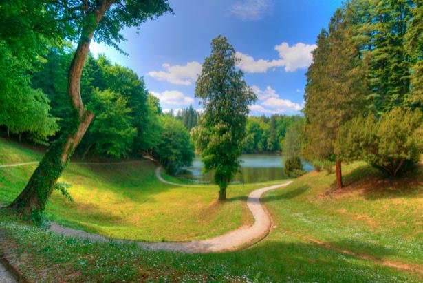 Фотообои дорога лес река (nature-00442)