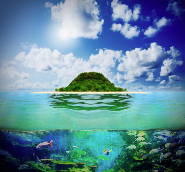 Фотообои море и под морем (sea-0000343)