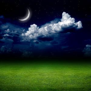 Фотообои месяц в ночном небе поле (sky-0000134)