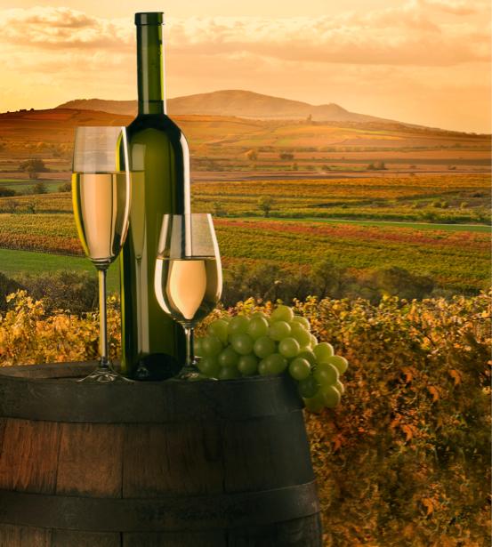 Фотообои бокал вина бочка с вином (still-life-0022)