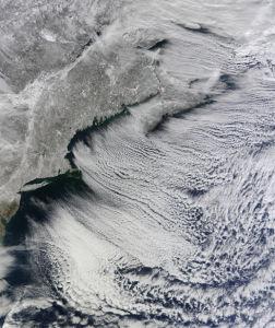 Фотообои рыхлости зимы (terra-00007)