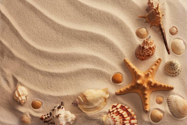 Морские ракушки на песке в ванную (underwater-world-00092)