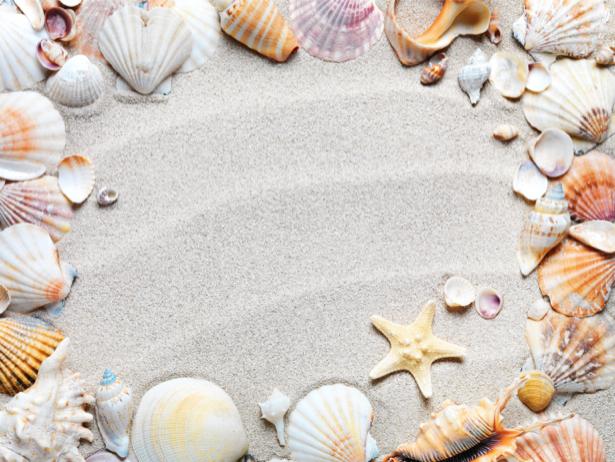 Фотообои в ванную морские ракушки (underwater-world-00130)