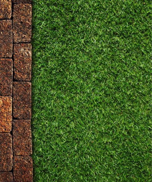 Фото обои обои на стену трава (flowers-0000590)