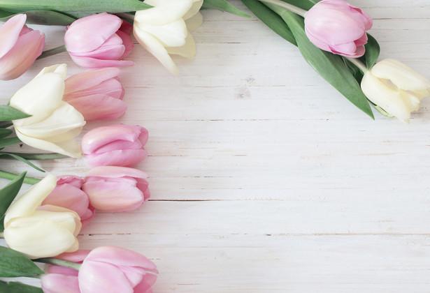 Фотообои Тюльпаны (flowers-783)
