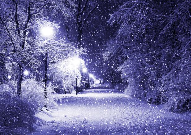 Фотообои с природой зимняя ночь (nature-00028)
