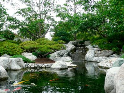 Фотообои с природой озеро (nature-00105)