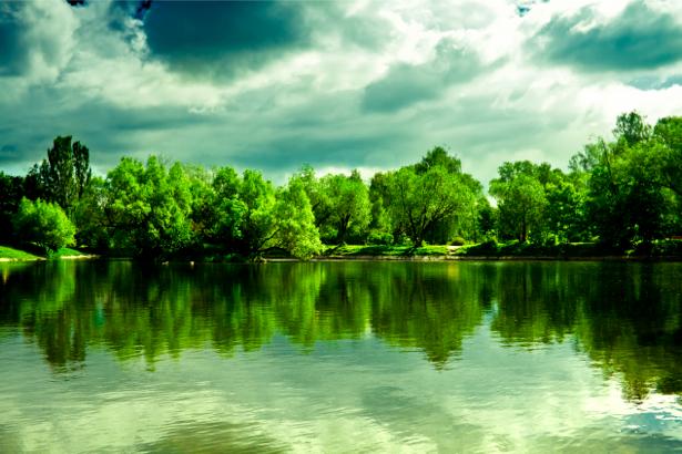 Фотообои река лес пейзаж фото (nature-00212)