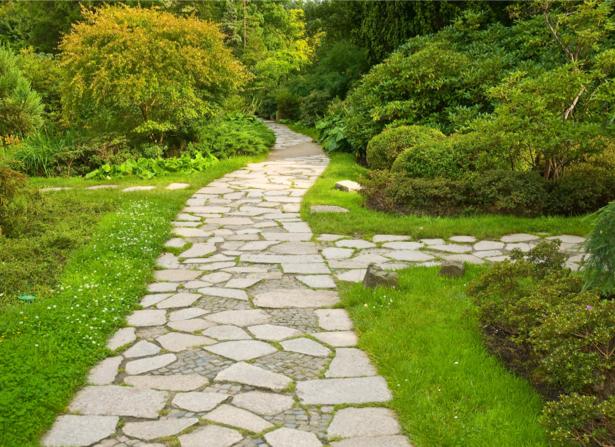 Фотообои дорога в саду (nature-00547)