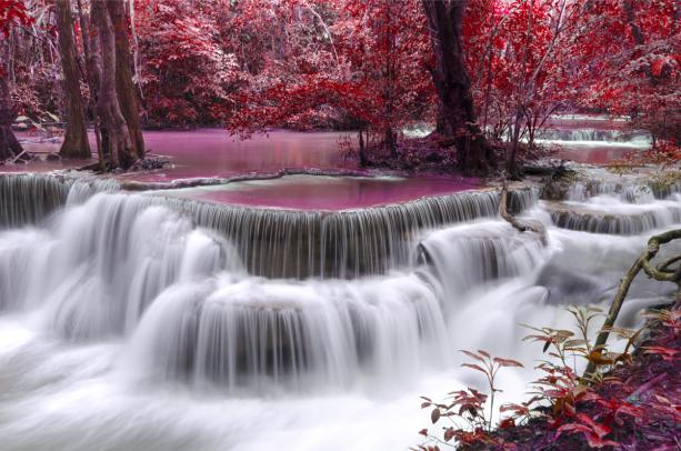Фотообои водопад, розовый лес (nature-0000847)