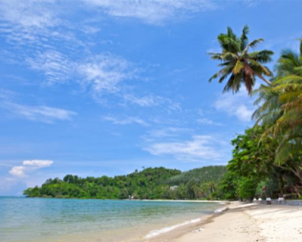 Фотообои морской пейзаж фото пальмы (sea-0000157)