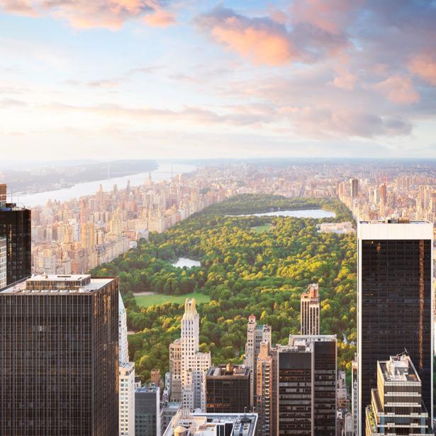 Фотообои Центральный парк Нью-Йорка (city-0000534)