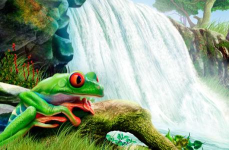 Фотообои лягушка на фоне водопада (fantasy-0000005)