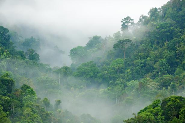 Фотообои облачный туман в горах (nature-0000674)