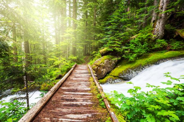 Фотообои мост через речку (nature-0000699)