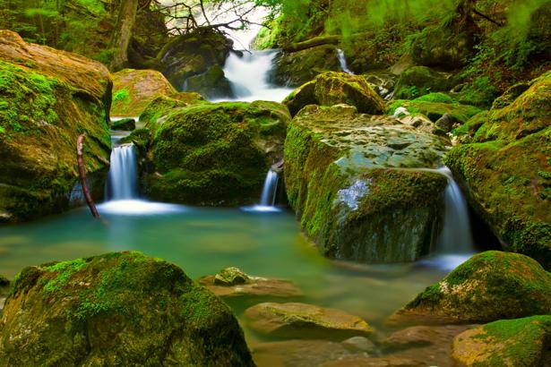 Фотообои горный водопад фото в лесу (nature-00450)