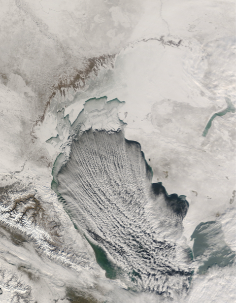 Фотообои рисунки зимы (terra-00261)