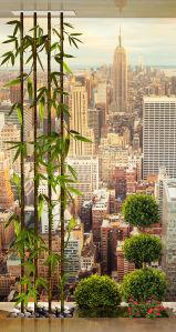 Фотообои Окно в Нью-Йорк (win-13)