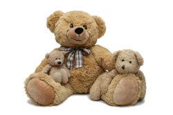 children-0000156