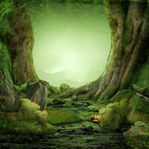 фотообои сказочный лес:: pictures11.ru/fotooboi-skazochnyj-les.html