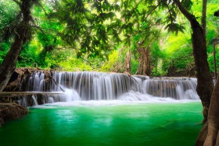Фотообои водопад, лес, озеро (nature-0000846)